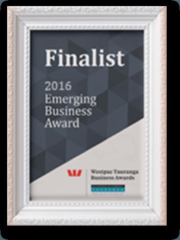Website Design award2016